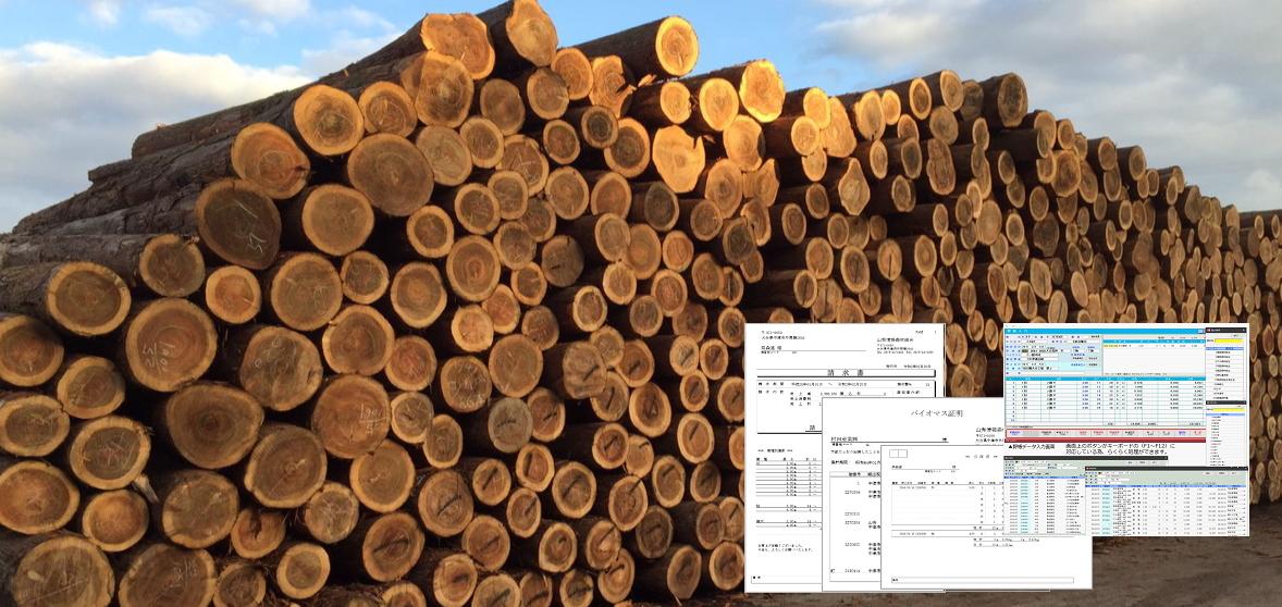 原木販売管理システム「樹乃庫」